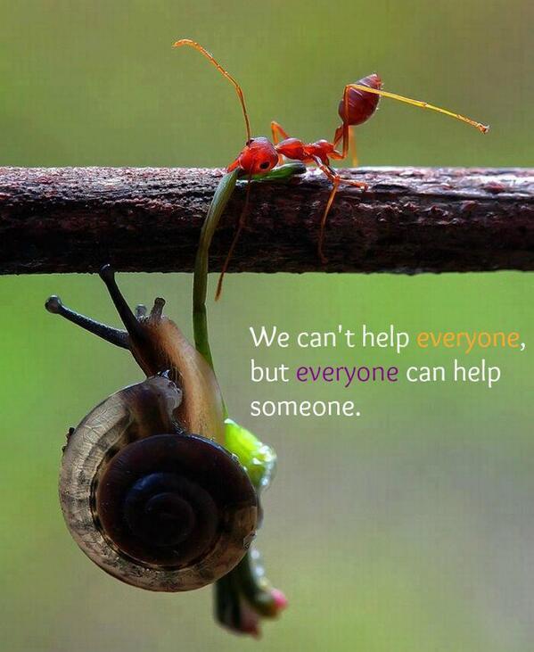 Image from http://dailywordsofencouragement.com
