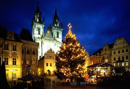 Prague Tree