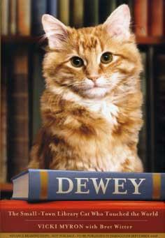 Image from deweyreadmorebooks.com